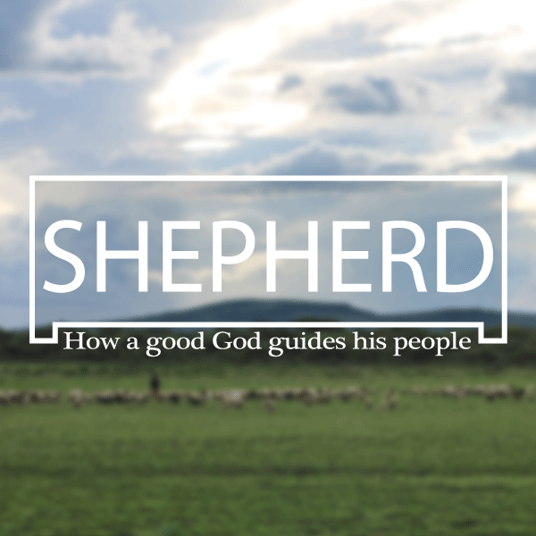 Shepherd Leaders